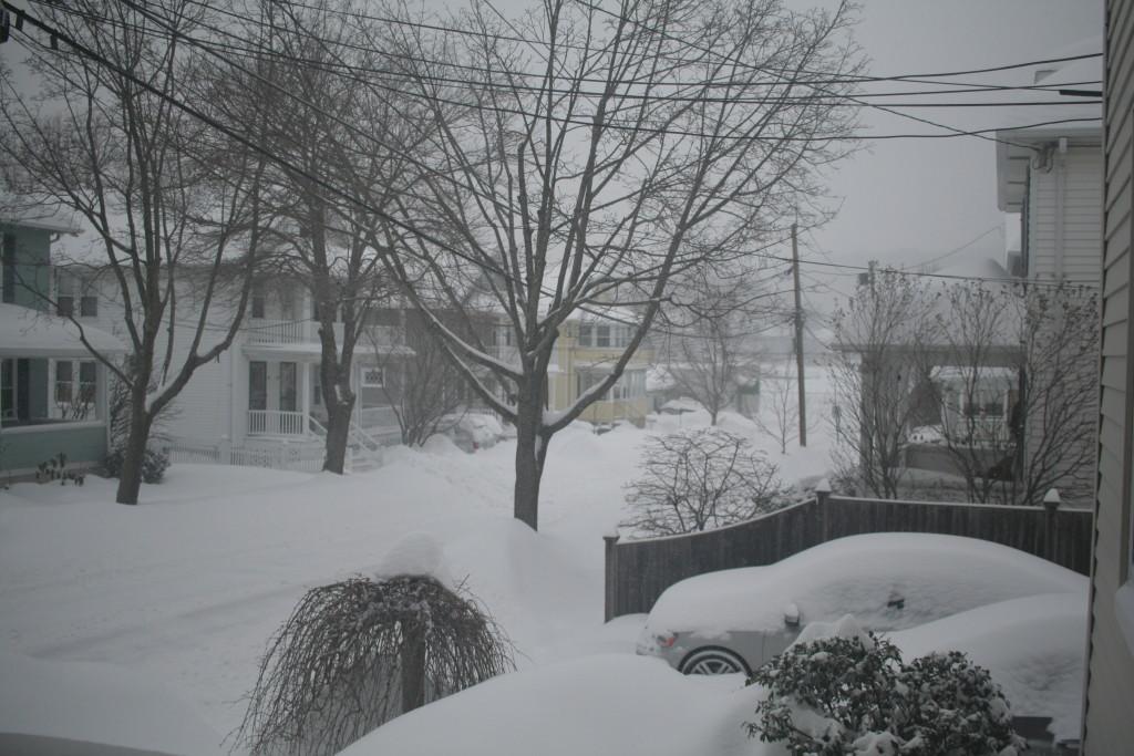 Belmont snow 2015